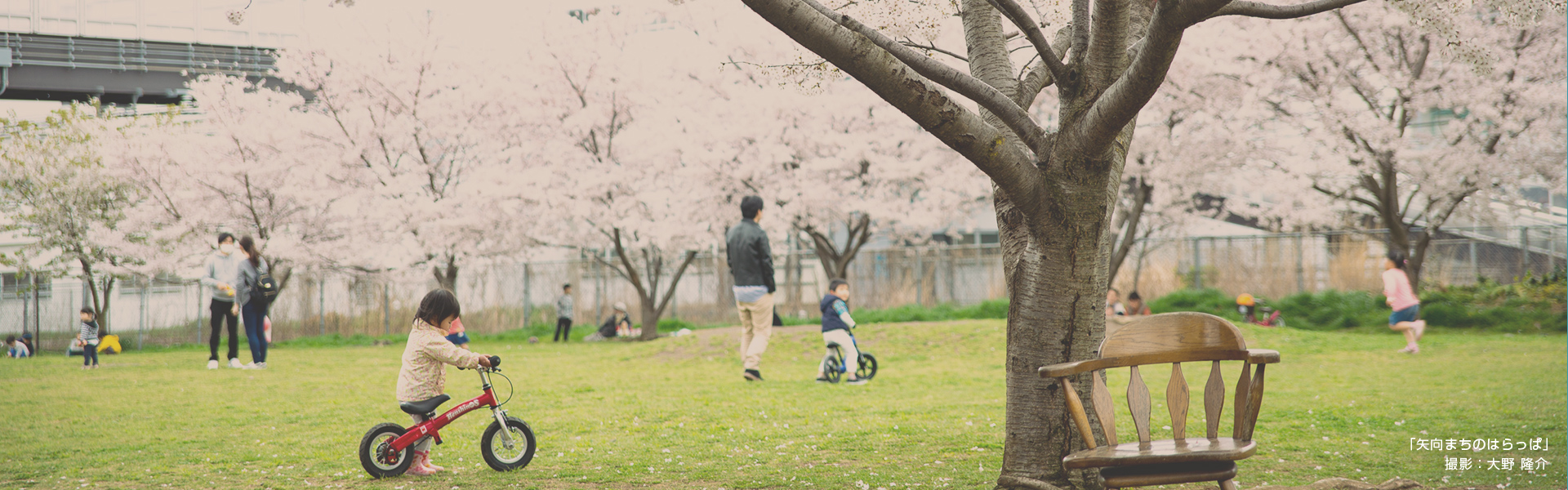 「矢向まちのはらっぱ」 撮影:大野 隆介