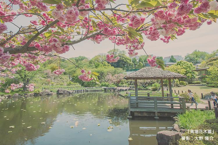 「馬場花木園」 撮影:大野 隆介